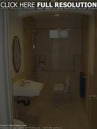 Handicap Bathrooms Designs Decorating Handicap Bathroom Design