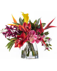 faux orchids amazing winter savings on faux orchids and heliconia tropical