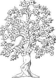 coloring pages for adults tree tree coloring pages dr odd