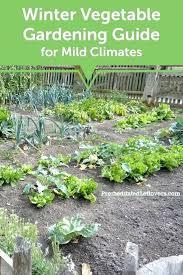 Fall Vegetable Garden Ideas Best Garden Plants For Hydraz Club