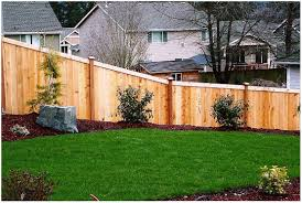 Backyard Fencing Ideas by Backyards Trendy Great Creative Front Yard Fences With Fence