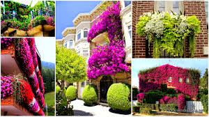 Beautiful Balcony Inspiration Pack Containing 23 Of The World S Most Beautifully