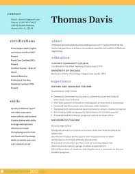 professional chronological resume template professional resumes