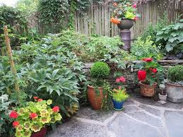 Shrubs For Patio Pots 11 Most Essential Container Garden Design Tips Designing A