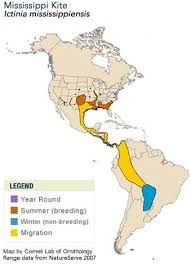 How Do The Eastern Lowlands Differ From The Interior Lowlands Category Hunter Gatherers