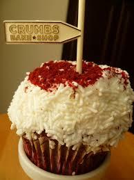 Order Cake Online Cupcake Wonderful Selling Cupcakes Online Mail Order Gourmet