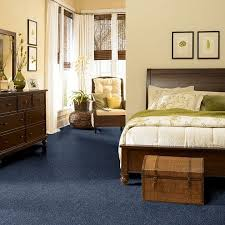 Carpeting Ideas For Living Room by Best 25 Blue Carpet Bedroom Ideas On Pinterest Blue Bedroom