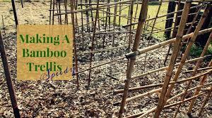 bamboo trellis planting pole beans speedy slm youtube