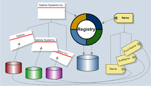 data registries registries the missing link for mastering data galdos systems inc