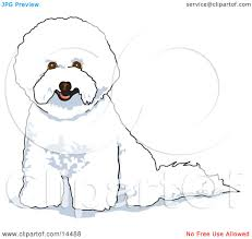 bichon frise long legs white bichon frise dog clipart illustration by andy nortnik 14488