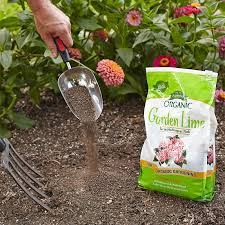 test and improve your soil