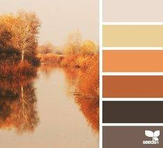 30 thanksgiving color palettes color my world