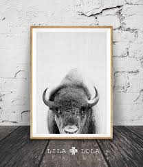 Black And White Decor by Buffalo Print Bison Wall Art Black And White Buffalo Modern