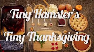 thanksgiving meal images photos give thanks for this tiny hamster u0027s adorable thanksgiving