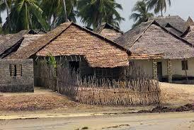 file faza in kenya u0027s coast province jpeg wikimedia commons
