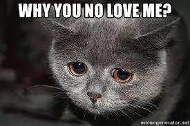 Why You No Love Me Meme - why you no love me sadcat meme generator