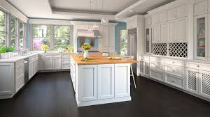 best kitchen cabinets cheap cheap kitchen cabinets sometimes you really do get what