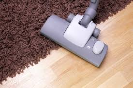 Fleas And Hardwood Floors - 10 successful tips on how to get rid of fleas in the house