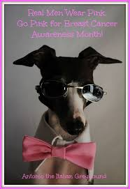 Real Men Wear Pink Meme - 323 best pink puppies breast cancer awareness images on pinterest