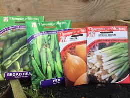 growing winter vegetables seasonal guides fillpots garden