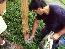 How To Build A Pergola On Concrete by How To Install A Picket Fence How Tos Diy