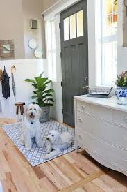 How To Clean Indoor Outdoor Rug New Indoor Outdoor Rug In The Entry Australian Labradoodle