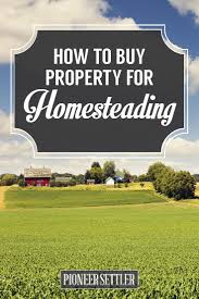 best 25 farm house for sale ideas on pinterest tiny cabins for