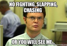 Fighting Memes - no fighting slapping chasing or you will see me schrute