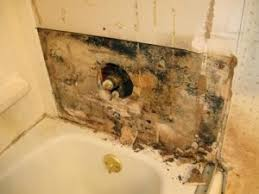 Orange Stains In Bathtub Gorgeous 40 Killing Mold In Bathroom Ceiling Decorating