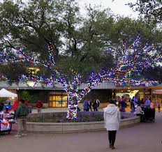 Potter Park Zoo Lights by Life By The Pool It U0027s Just Better Zoo Lights At The Houston Zoo