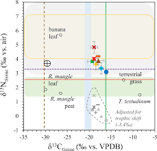 stable isotopes in bivalves as indicators of nutrient source in