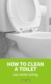 How To Use A Bidet Toilet Seat The Toilet Pine Sol