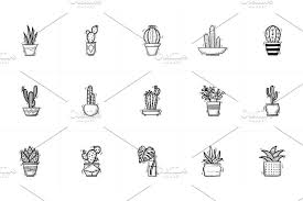 house potted cactus and succulent sketch icon set illustrations