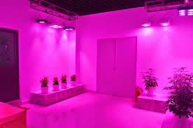 pink lights for room awesome lighting experience creative lead lighting showroom find