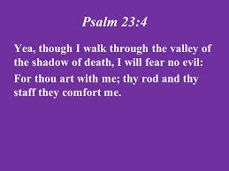 Thy Rod And Thy Staff Comfort Me Psalm Ppt Video Online Download