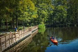 North Carolina nature activities images Things to do wilmington nc official tourism site jpg