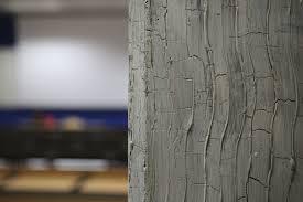 decorative paint for walls interior acrylic bark