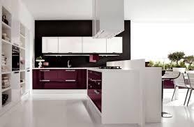 L Shaped Modern Kitchen Designs by Kitchen Style Elegant Kitchen Minimalist Modern Kitchen Ea With