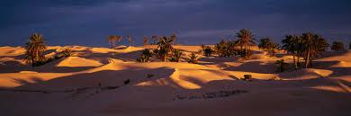 colin prior deserts