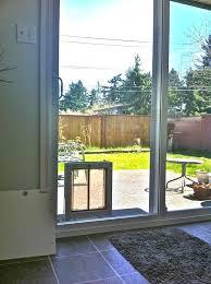 Exterior Cat Door Exterior Cat Door Outdoor House Two Doors Backyards Installing How