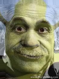 Albert Einstein Meme - shrek albert einstein morphed morphthing com