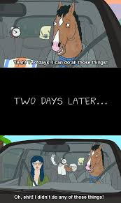 in two days i can do all those things bojack horseman