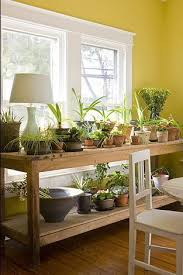 window table for plants indoor garden inspiration bring in the terracotta plant table
