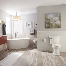 151 Best Images About Walls Acticlean Self Cleaning Elongated Toilet American Standard Toilets