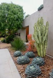 Desert Backyard Ideas Laguna Dirt Photos Outside A Landscape Architect U0027s Office In