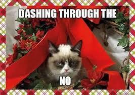 Grumpy Cat Photo 1 Best - five grumpy cat memes for the holiday season kittentoob