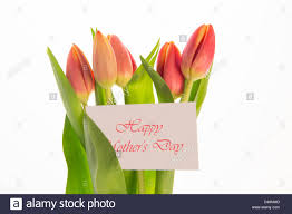bouquet of pink and yellow tulips with mothers day message on card