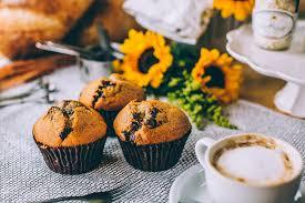 charlotte bakery w 4 locations buy u0026 ship cupcakes online