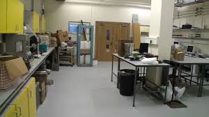 basement laboratory and cold room youtube