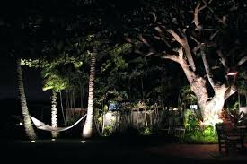 Landscape Lighting Trees Tree Straps For Landscape Lighting Well Lights And On Risers